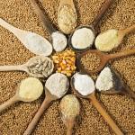 Scelte alimentari alla ricerca di un equilibrio fra salute e gusto: farina di frumento sì o no?